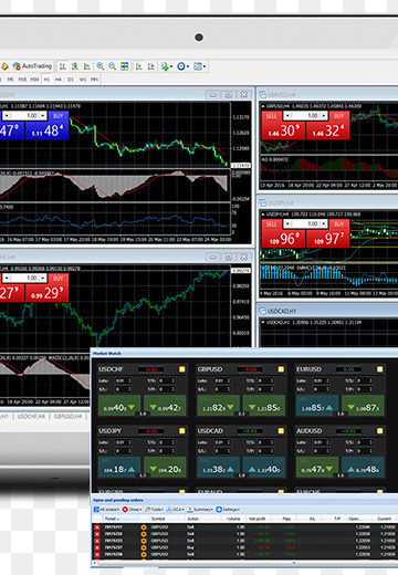 Tips For Choosing the Best Foreign Exchange Software